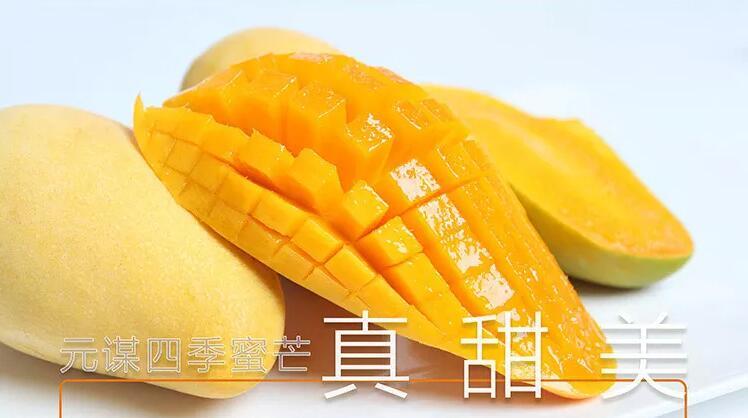 元谋果蔬·四季蜜芒