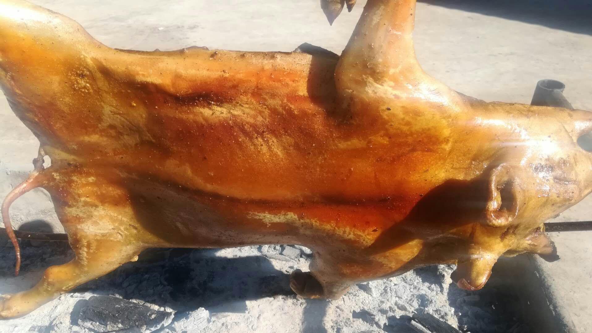 烤野猪--凉山乡