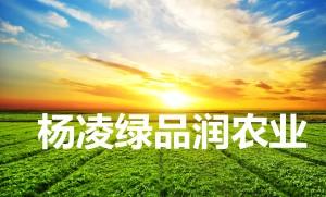 杨凌绿品润农业科技有限公司