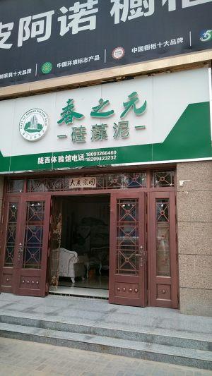 春之元硅藻泥陇西体验馆