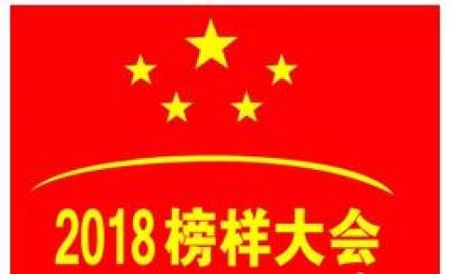 2018榜样大会召开,孝感义工连义纯应邀出席!