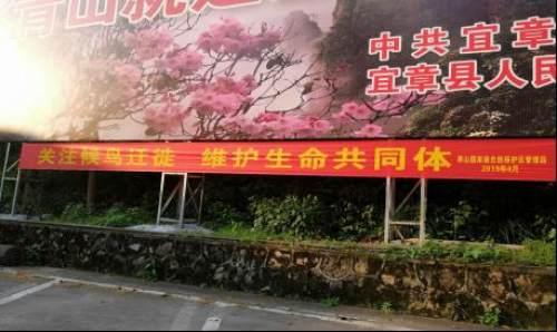 """莽山国家级自然保护区积极开展""""爱鸟周""""宣传活动"""