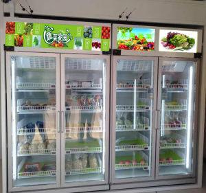 广州蔬菜水果自动售货机厂家招商加盟