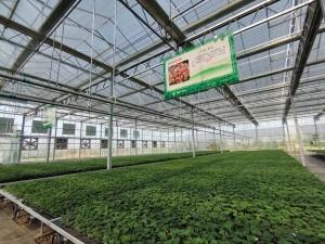 杨凌龙德盛农业科技有限公司
