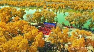 【新疆是个好地方】从绚烂之秋走向银装之冬
