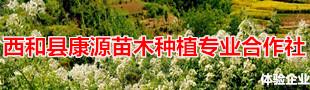 澳门威尼斯人正规娱乐平台康源苗木种植专_x005f_x0008_业合作社
