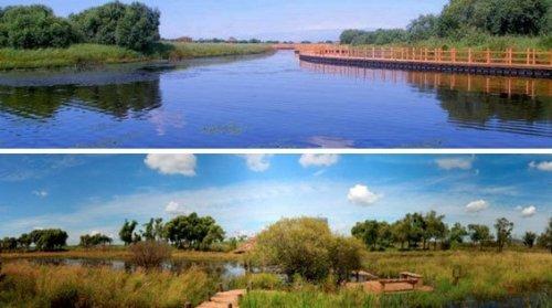 信丰县桃江省级湿地公园日前已由省林业厅批准开展试点建设。